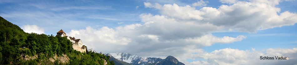 VuVL - Verein unabhängiger Vermögensverwalter in Liechtenstein